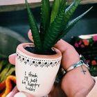cat garden ideas instagram Account