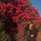 Lidka Atanasova's Pinterest Account Avatar