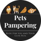 Pets Pampering | Pets Blogging | Best Pets Products Accessories Pinterest Account