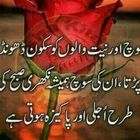 Iqra Ameen Pinterest Account