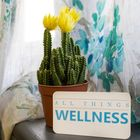 All Things Wellness I Rebuild Your Relationship With Food I  Pinterest Account