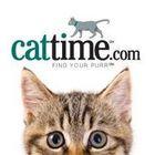 CatTime's Pinterest Account Avatar