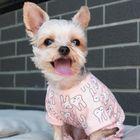 Funny Animals Pinterest Account