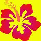 Hibiscus Creations Pinterest Account
