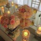 Wilma Gonzalez Pinterest Account