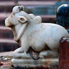 Hari Ram Astrologer's Pinterest Account Avatar