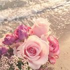 ربي أهديتني شخص قد جمل حياتي أخشى عليهمن كل شئ ربي ابعد عنه كل ما يؤذيه واحفظهلي اللهم اني Sweet Love Quotes Love Husband Quotes Romantic Words