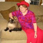 Barbara York Pinterest Account