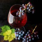 Wine Storage Pinterest Account