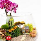 Shilynak- lifestyle  Pinterest Account