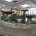 Huntington Beach Public Library Pinterest Account