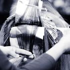 Anazao Salon Aveda Pinterest Account