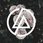 Destiny Lewis instagram Account