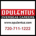 Opulentus - The Visa Company Pinterest Account