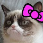 Chu Lala Pinterest Account