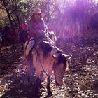 Madoka W-D-B Pinterest Account