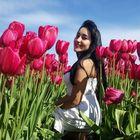 Carolina Romero Pinterest Account
