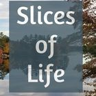 Slices of Life Pinterest Account