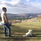 Вадим Батбаяр Pinterest Account