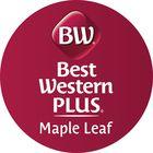 Best Western Plus Maple Leaf Pinterest Account