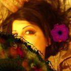 Sara Theflatteringeye Account