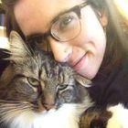 Shannon Weidenheimer Pinterest Account
