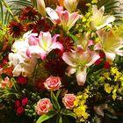 Flowers Talking Pinterest Account