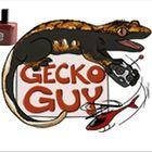 Gecko Guy Pinterest Account