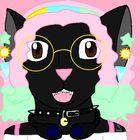 Omega-Opal Pinterest Account