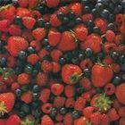 Berry's Delights instagram Account