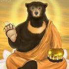 SayuriBear's Pinterest Account Avatar