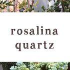 rosalina quartz Pinterest Account