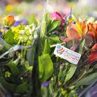 American Grown Flowers Pinterest Account
