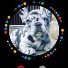 Tatianna Esposito instagram Account