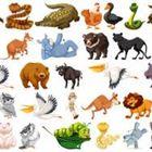 Animals's Pinterest Account Avatar