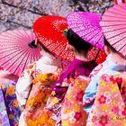 Japan Dreamscapes Pinterest Account