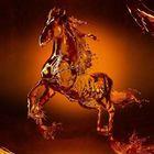 Miguel Avalom Designs instagram Account
