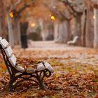 autumn scenery Pinterest Account