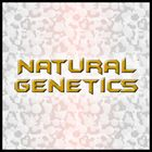 Natural Genetics Daniel's Pinterest Account Avatar