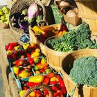 Fresh Vegetables Pinterest Account