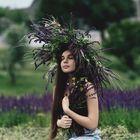 Elena Farrens Pinterest Account