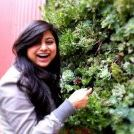 Verna Bhargava's Pinterest Account Avatar