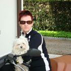 Lory Carnelli Pinterest Account