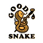 Good Snake Pinterest Account