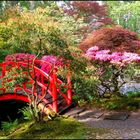 Small Backyard ideas's Pinterest Account Avatar