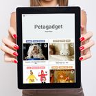 Petagadget's Pinterest Account Avatar