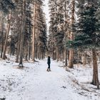 One World Wanderer | Travel Blogger Pinterest Account