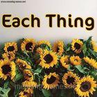 Each Thing  Pinterest Account