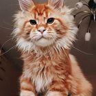 Cats Pinterest Account