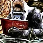 Graham Christopher instagram Account
